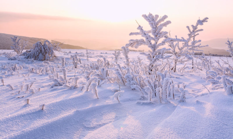 Východ slunce v pohádkově omrzlé krajině