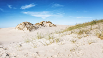 Dunes_1600